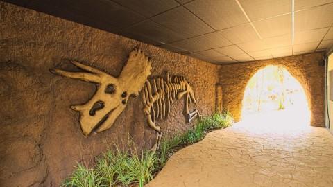 Imagem representativa: Principais Atrações do Vale dos Dinossauros